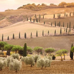 Understanding Italian soil – The key to successful gardening in Italy