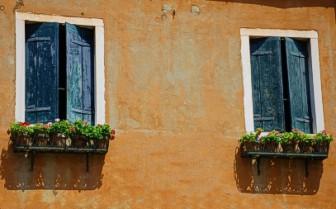 External wooden window shutters