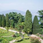 Italian Garden Design – Topiary In Italian Gardens