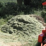 Organic Gardening in Italy and Making Compost