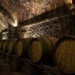 Introduction to Italian Wine